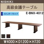 E-BNX-4012.jpg